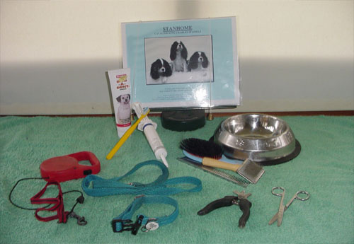 puppy equipment